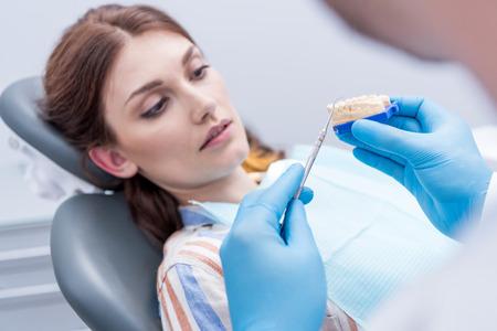 歯科医に焦点を当てた患者歯の型を表示