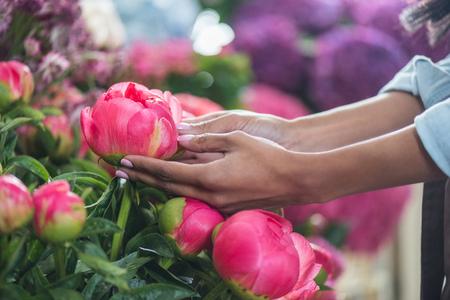 vrouwelijke handen met prachtige bloemen van de pioenroos
