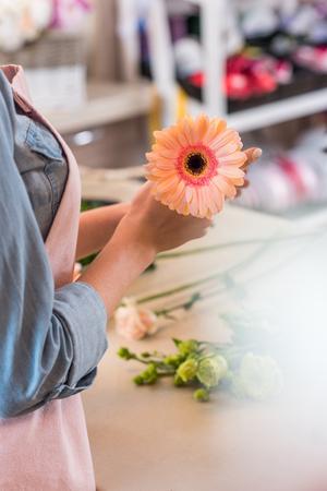 florist in apron holding beautiful gerbera flower