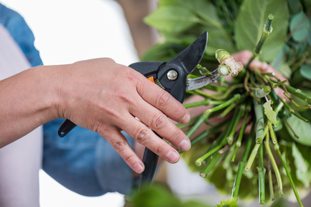florist cutting green stems with secateurs