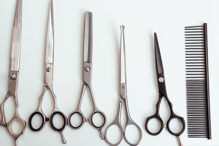close-up view of various scissors and comb for dog grooming Stock Photo