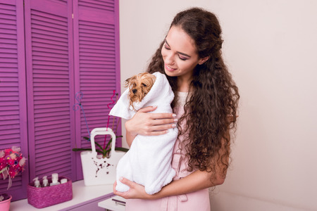 smiling woman holding cute wet yorkshire terrier dog wrapped in towel after bath Stock Photo
