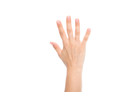 hand Banco de Imagens - 88332820