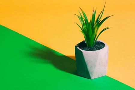 Plastic plant in flowerpot