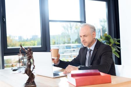 노트북을 사용하는 변호사 스톡 콘텐츠