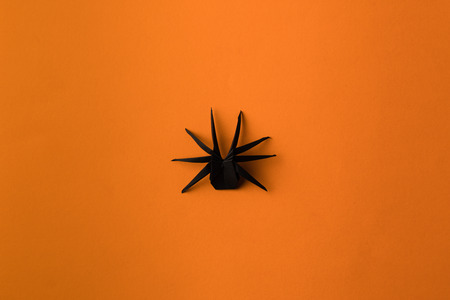 one halloween black origami spider, isolated on orange