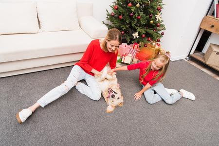 family and dog at christmastime 版權商用圖片