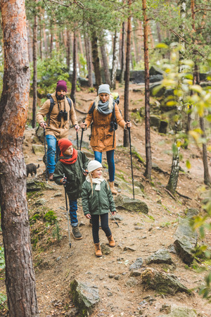 family walking in autumn forest Stock Photo