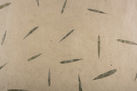 paper with willow leaves