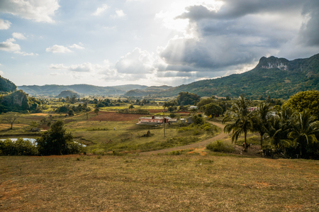 beautiful scenic landscape with mountains, palms and cloudy sky Stock fotó - 89995435