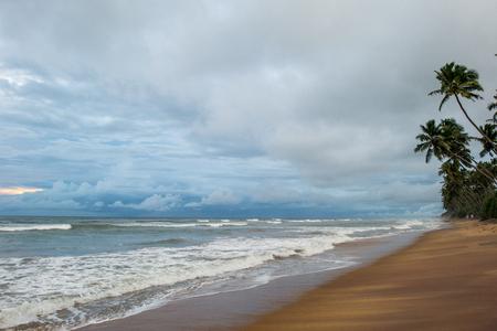 야자수와 열 대 해변에서 폭풍우 치는 날에 아름 다운 바다 경치