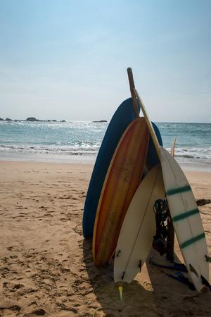 아름 다운 모래 해변에 서있는 서핑 보드 스톡 콘텐츠