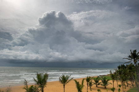 stormy sky over sea at tropical island with palm trees on foreground