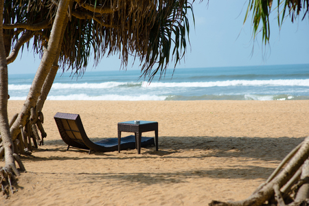 luxury sunbed under tropical trees on sandy beach Stock Photo
