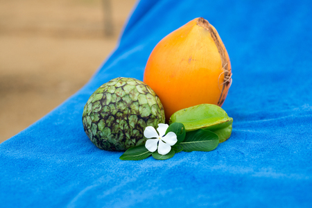tropical fruits composition on blue towel