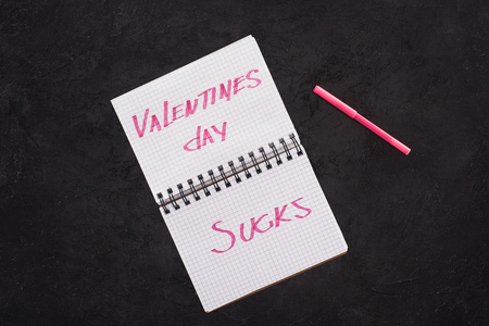 top view of notebook with valentines day sucks and pen