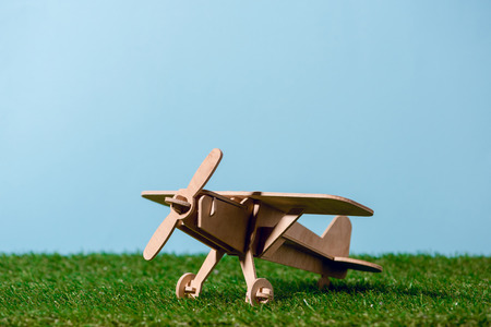 small wooden toy plane on green grass