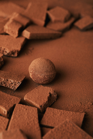 close up view of sweet truffle and chocolate in cocoa powder