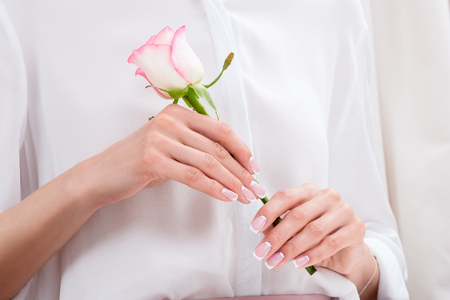 close-up partial view of young woman holding beautiful pink rose Stock Photo
