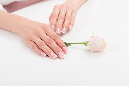 cropped shot of young woman with stylish manicure holding beautiful rose flower Stock Photo - 93886720