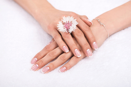 close-up view of female hands with perfect manicure and beautiful flower on white