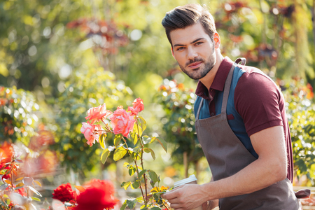 handsome gardener in apron holding disposable cup of coffee in garden Stockfoto