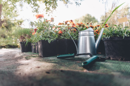 gieter, hand troffel en hark staan in de tuin