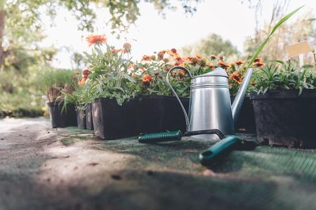 watering can, hand trowel and rake standing in garden Stock Photo