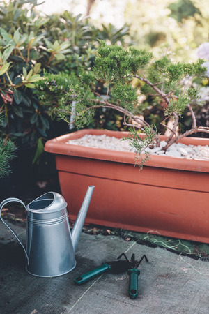 watering can, hand trowel and rake standing in garden 版權商用圖片