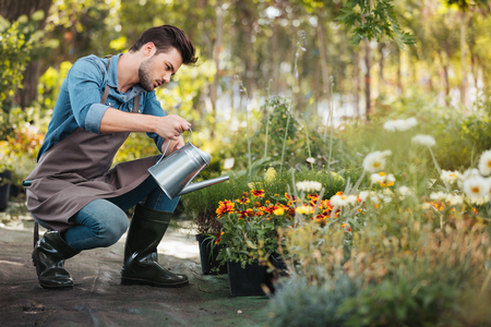 young gardener in apron and rubber boots with watering can in hand watering plants in garden