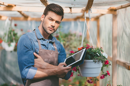 gardener holding tablet in hands while standing in greenhouse Stock Photo