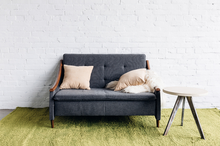small couch in modern living room with white brick wall