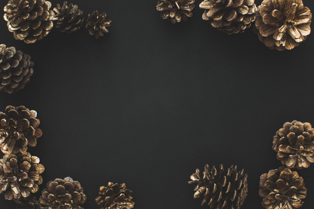 Frame of pine cones on black isolated background.