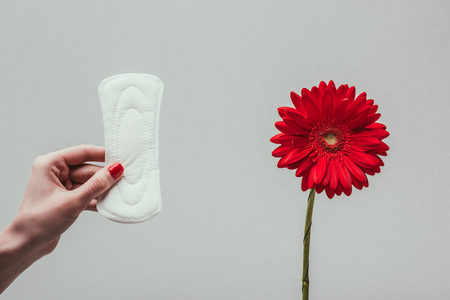 partial view of woman holding menstrual pad in hand with flower near by Reklamní fotografie