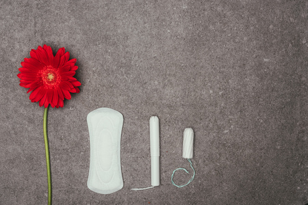 top view of arrangement of red flower, menstrual pad and tampons
