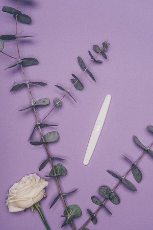top view of arranged pregnancy test, flower and green eucalyptus leaves