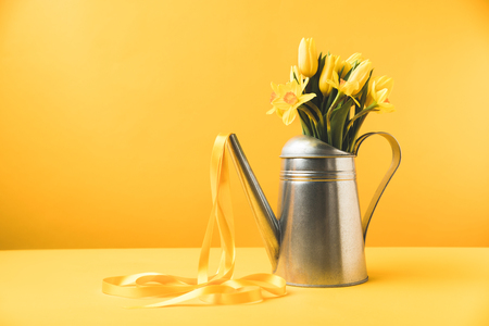 beautiful yellow spring flowers in watering can with ribbon on yellow  Stock Photo