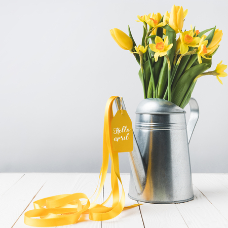 beautiful yellow daffodils and tulips in watering can on grey
