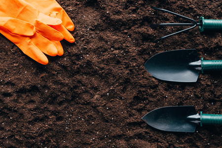 top view of orange rubber gloves and small gardening tools Reklamní fotografie - 97384605