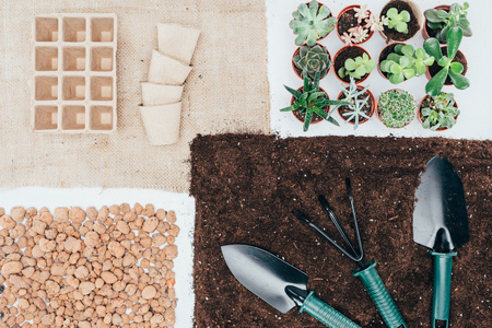 top view of green potted plants, empty pots, soil, stones and gardening tools