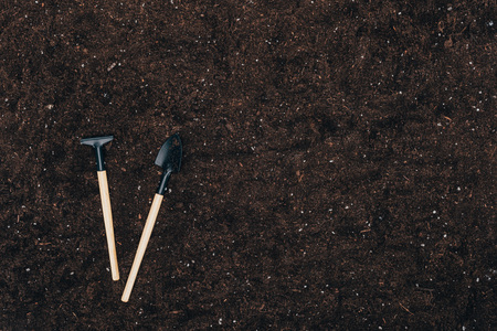 gardening tools on ground with copy space