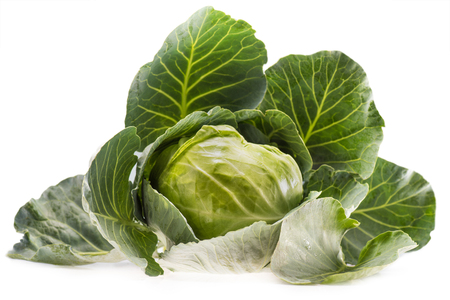 head of fresh ripe healthy cabbage isolated on white