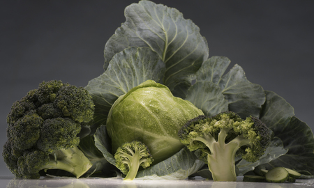 Still-life of healthy fresh cabbage and broccoli isolated on grey 스톡 콘텐츠