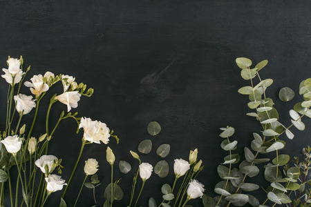 top view of eustoma flowers with eucalyptus leaves over black background Reklamní fotografie