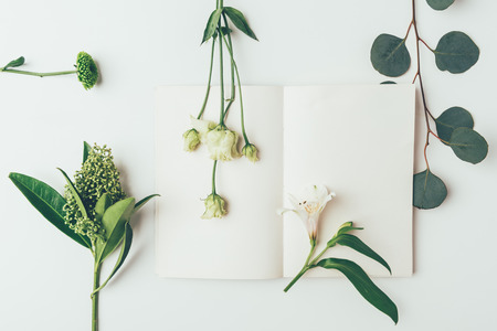 top view of beautiful tender flowers and plants with blank card on grey Imagens