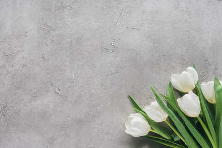 top view of white tulips on concrete surface