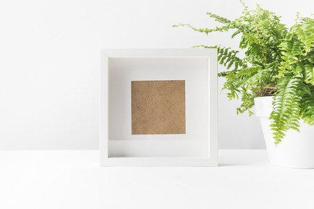 close-up view of empty photo frame and beautiful potted fern on white