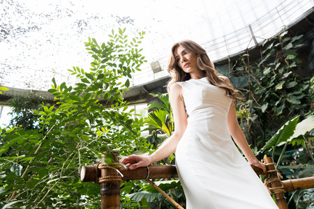 attractive woman in white dress posing in tropical orangery