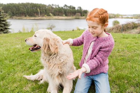 adorable redhead girl playing with dog while kneeling on green grass  Stockfoto