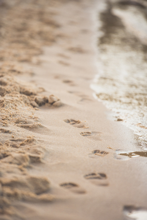 selective focus of footprints on sandy beach on summer day